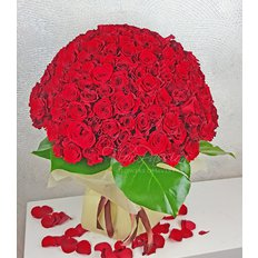 365 Rose Rosse