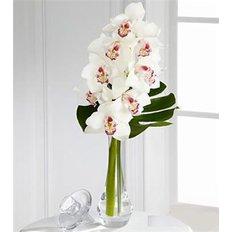 Bouquet con Orchidea Cymbidium