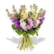 Bouquet Violaciocca
