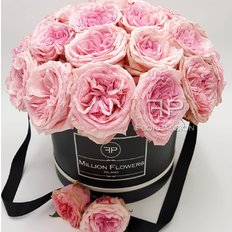 Dome Pink O'hara Million Flowers Box