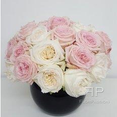 O'Hara Rose Perfume