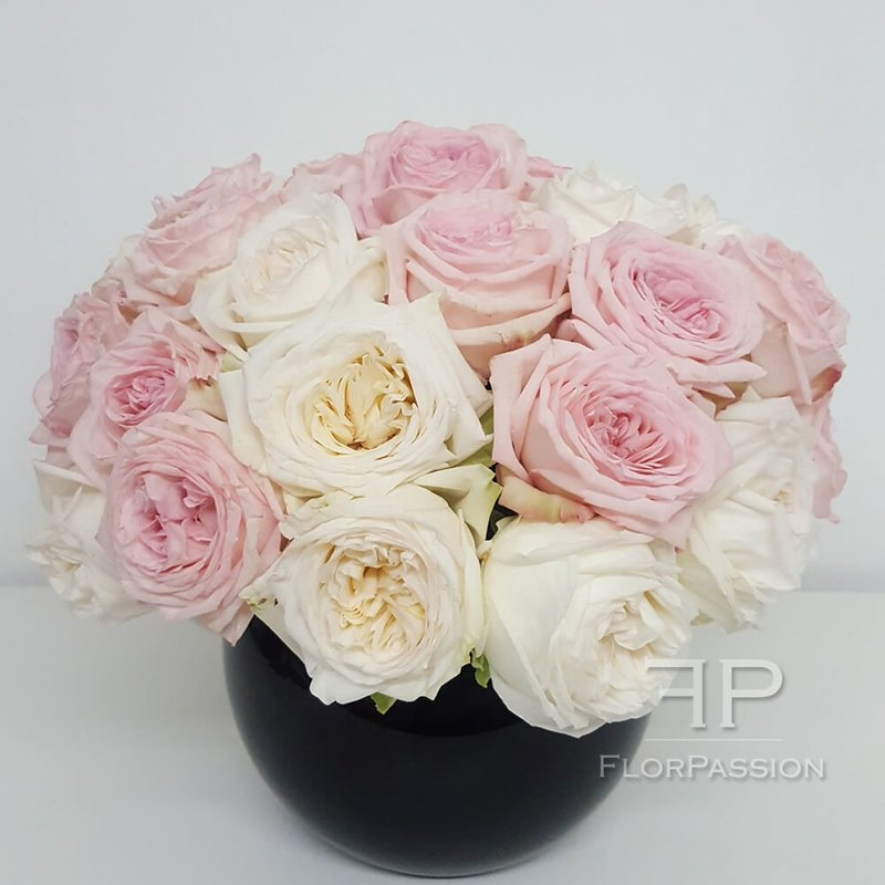 Ou0027Hara Rose Perfume