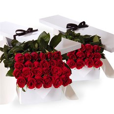 Three Dozen Red Roses in a Gift Box