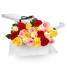 Two Dozen Multicolored Roses in a Gift Box