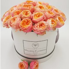 Vuvuzela Roses Million Flowers Box