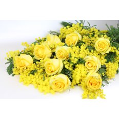 Yellow Roses and Mimosa